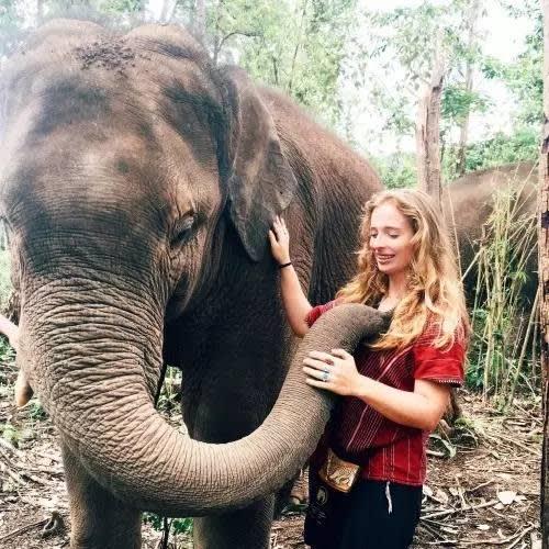 在 這 裡 , 你 可 以 選 擇 跟 大 象 來 一 次 親 密 接 觸 。