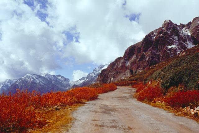 去 往 雲 塘 山 谷 的 路 上 。 Flickr: Uday Mulay