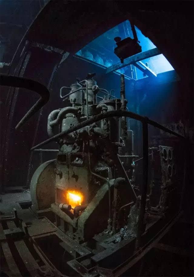 這 張 照 片 成 為 英 國 水 下 攝 影 大 獎 的 作 品 之 一 。