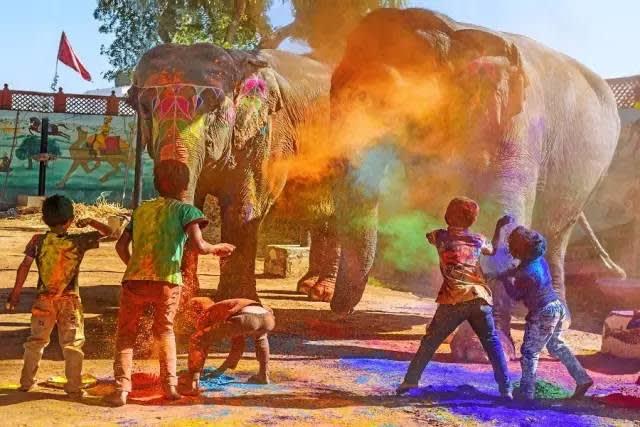 印 度 大 象 color run