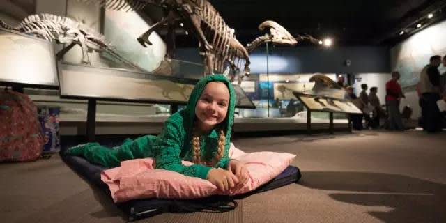 菲 爾 德 自 然 博 物 館