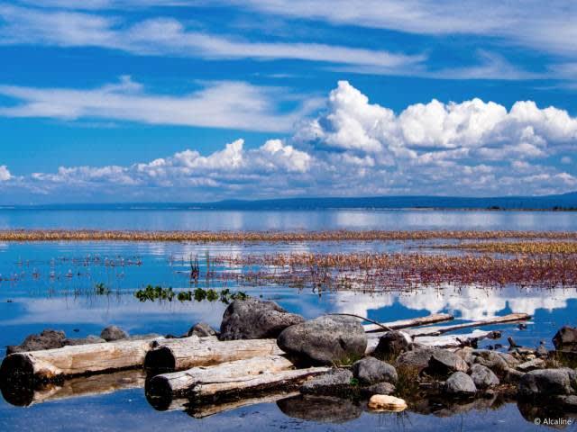 庫 蘇 古 爾 湖 |Flickr: alcaline_ca