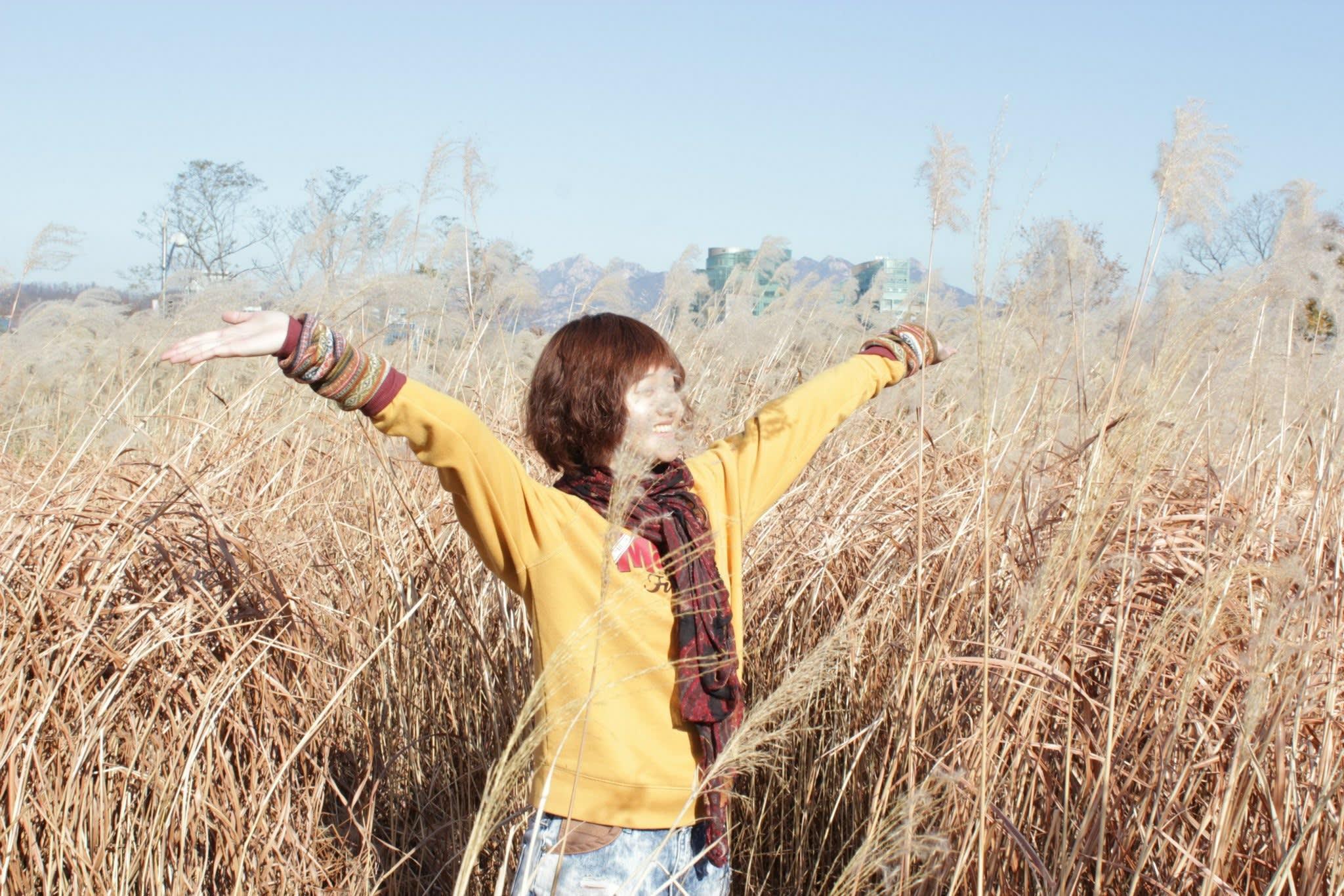 【首爾景點】韓國IG網美最新打卡景點:天空公園紫芒草季 - KLOOK客路