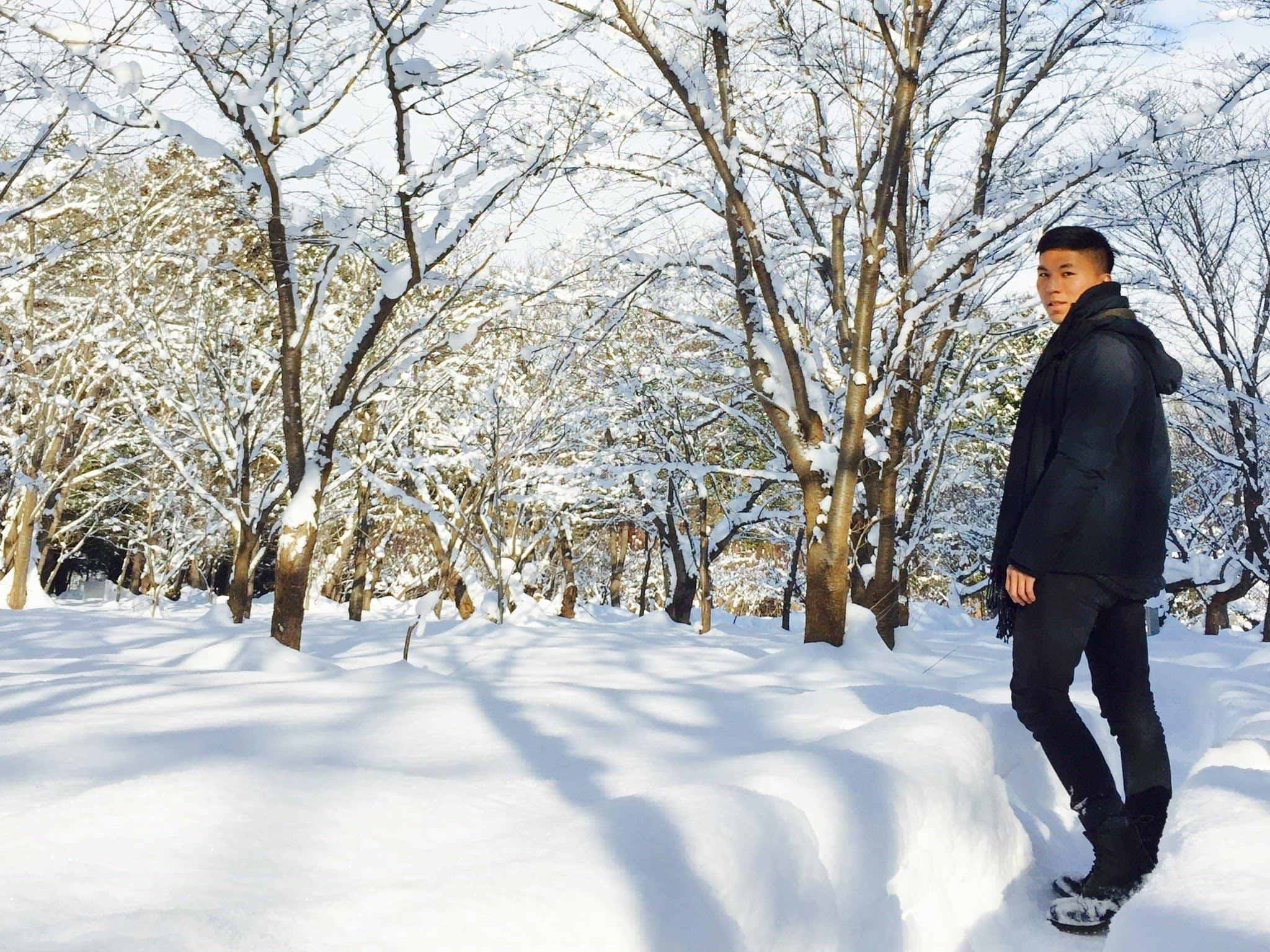 北海道神宮內的原木林 。 Photographer|Zach Huang