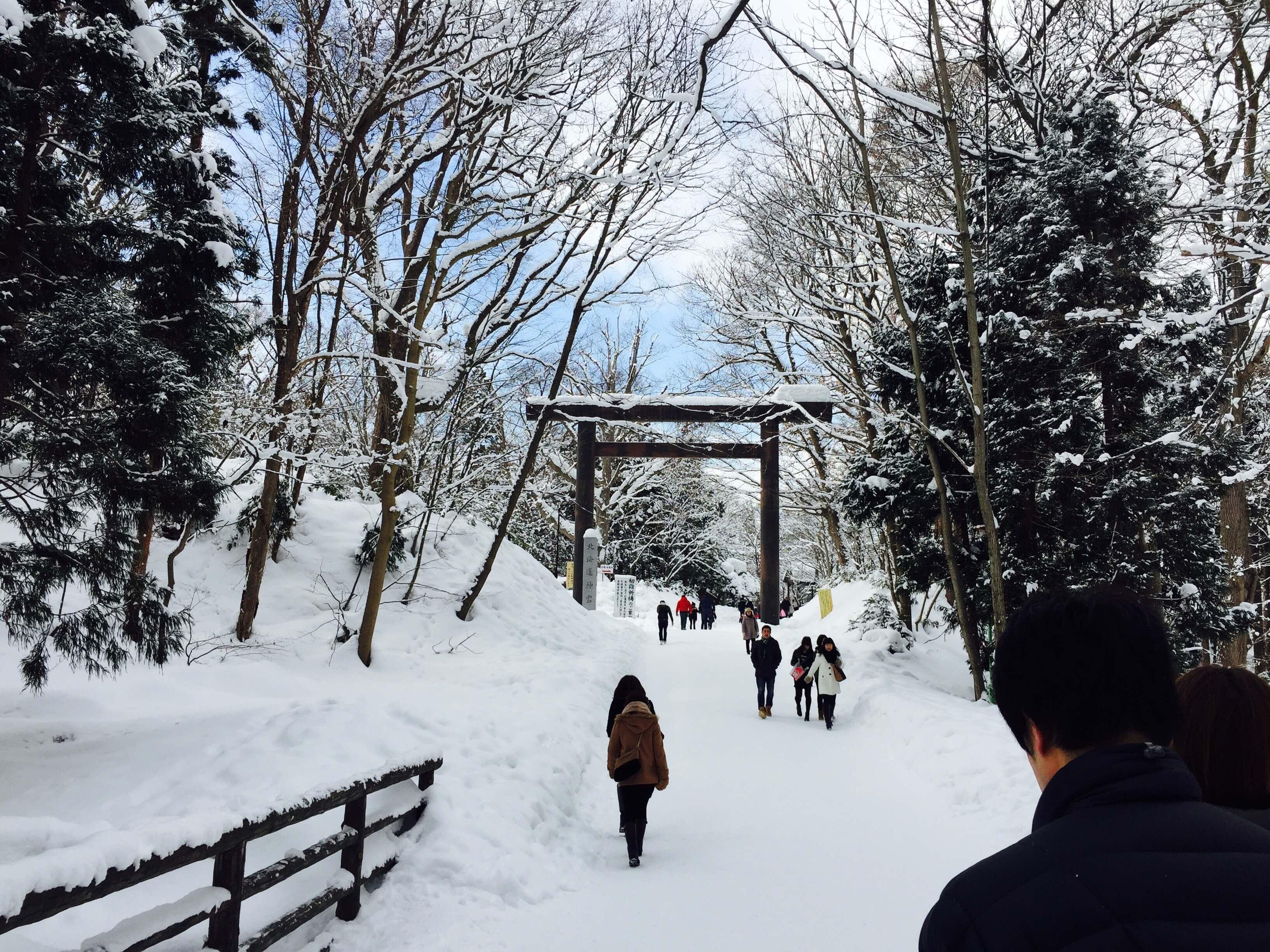北海道神宮 。 Photographer|Zach Huang