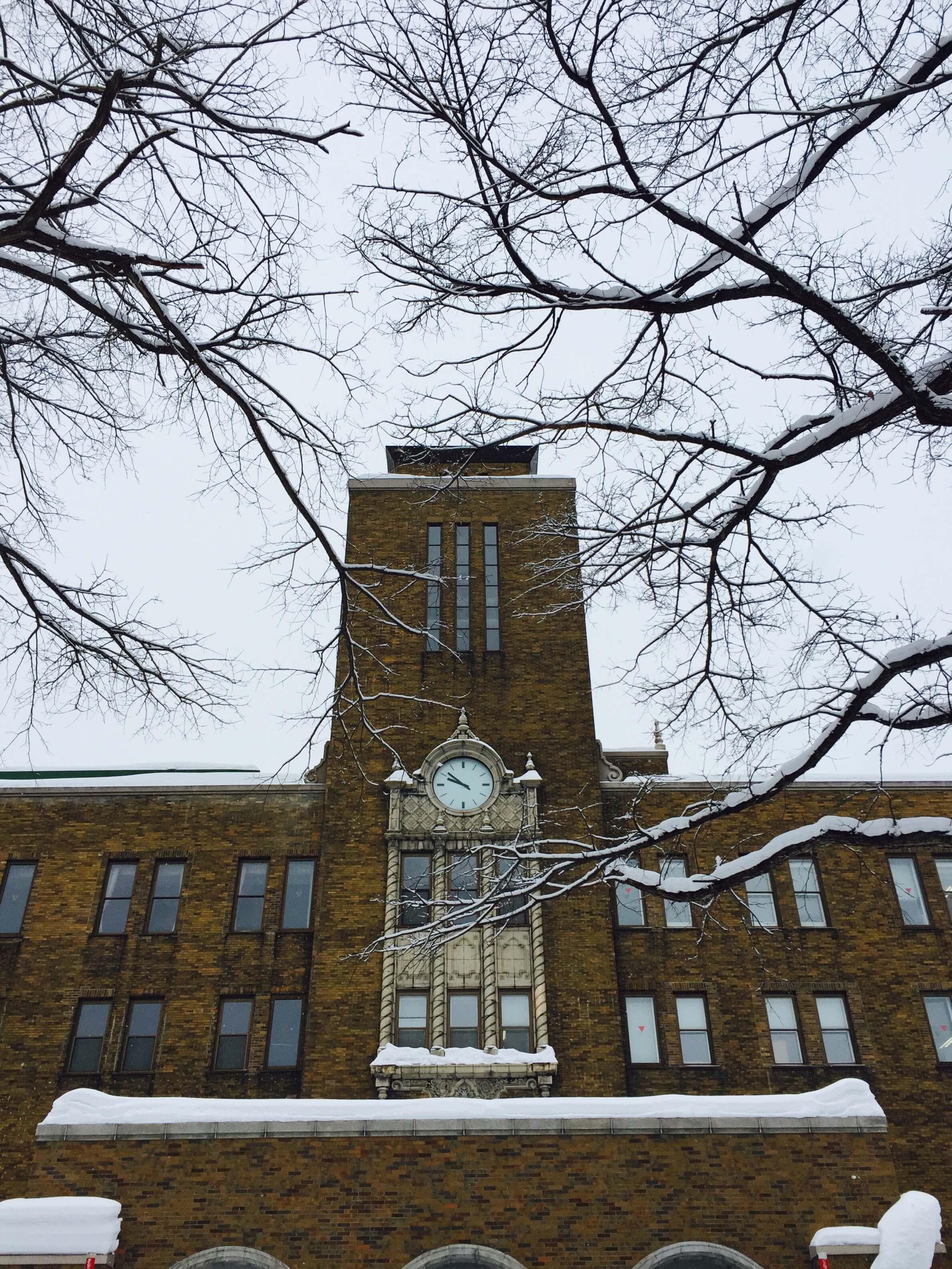 北海道大學農學部・冬