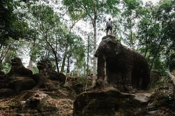 站 在 大 象 的 肩 膀 上 , 可 以 看 得 更 遠 更 闊