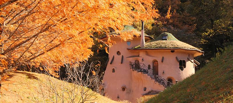 秋天金黃色的嚕嚕米公園非常漂亮/ Photo:www.city.hanno.lg.jp