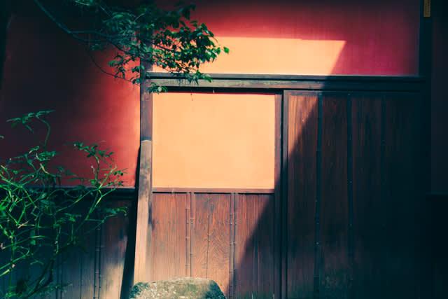 Photographer|Arlene Li