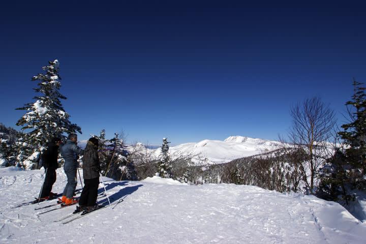 除 了 泡 溫 泉 之 外 ,到 草 津 也 不 能 錯 過 滑 雪