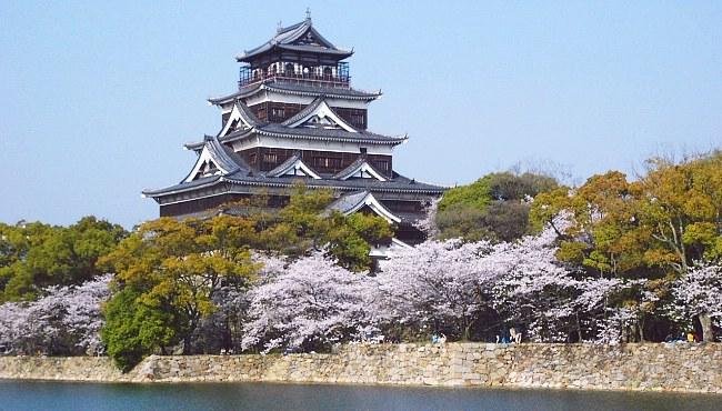 hiroshima castle cherry blossom