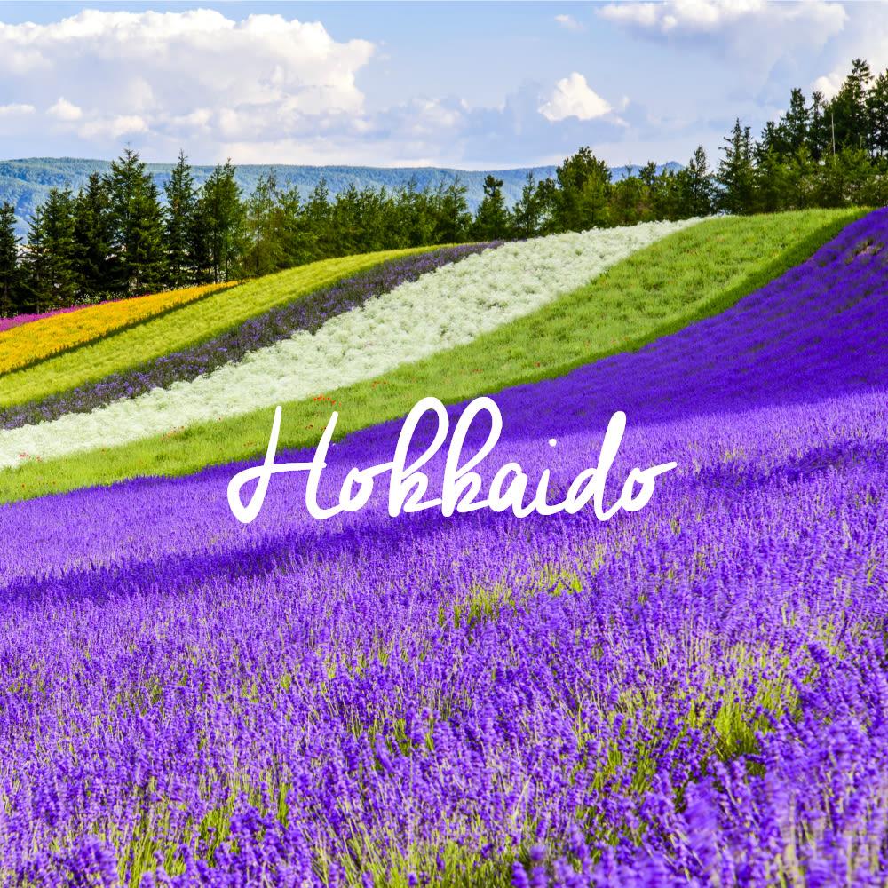 JR-Pass-Hokkaido-Article-Thumbnail