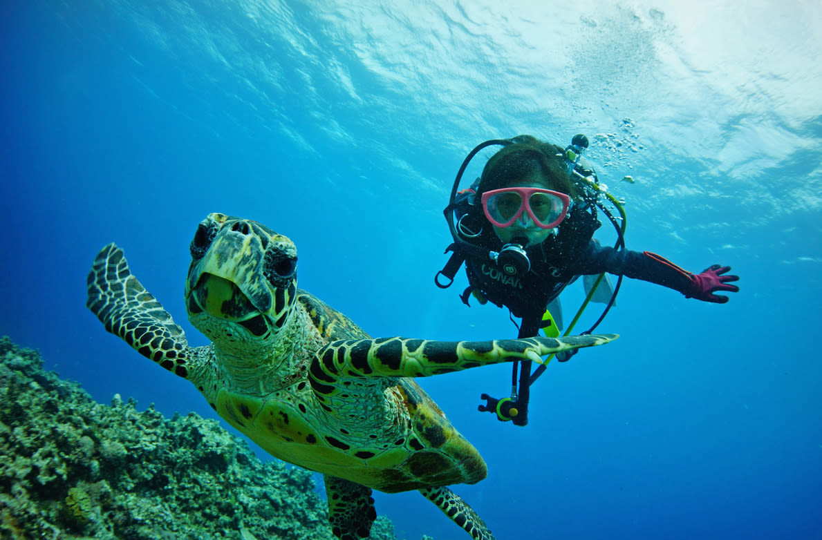 Okinawa Diving Klook