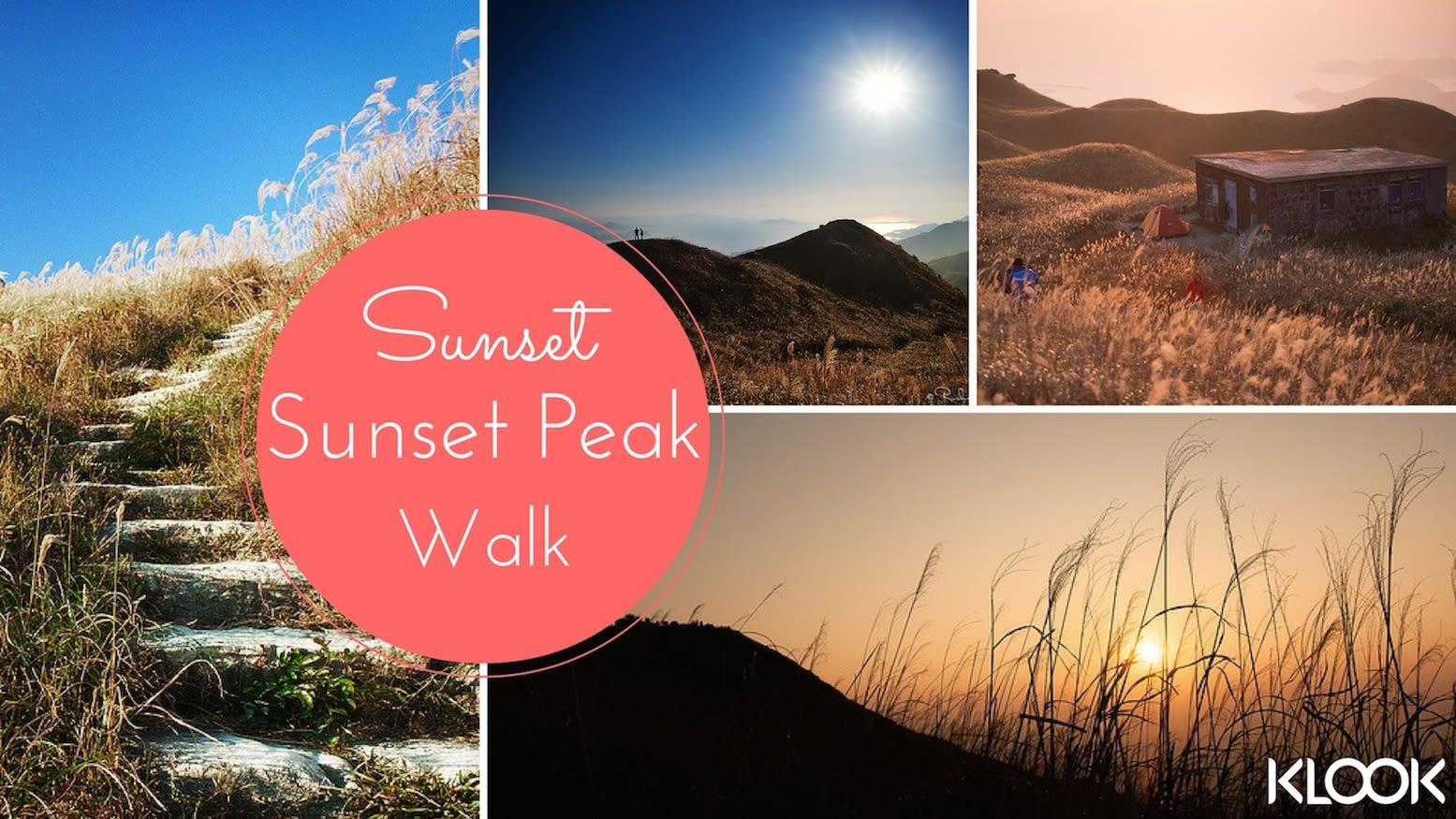 hiking, hiking trail, hiking in hong kong, hiking with lover, hiking with boyfriend, hiking with girlfriend, Sunset Peak, Tai Tung Shan, sunset, Silver-grass