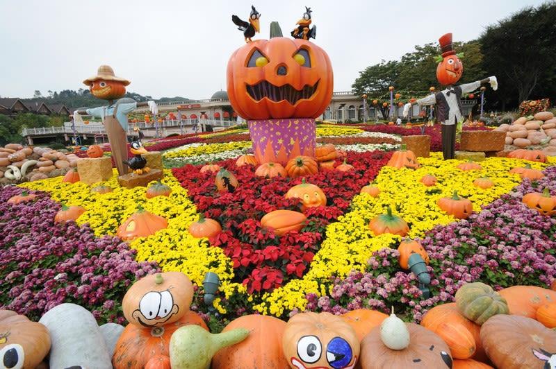 Pumpkin patch display at Everland