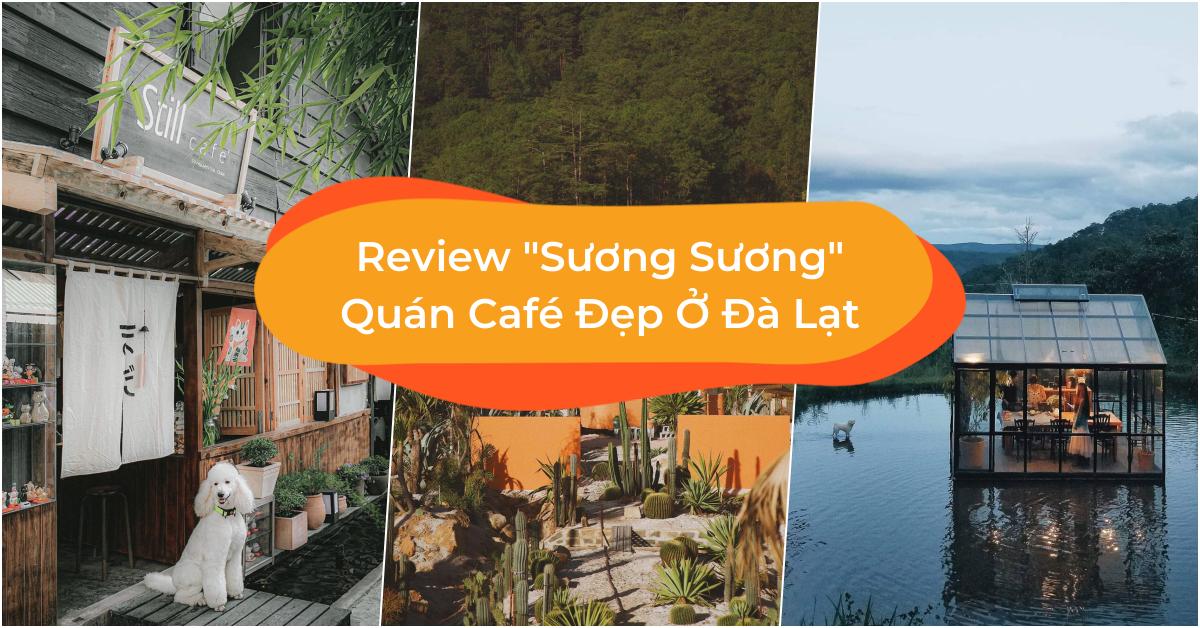 Review Sương Sương 10 Quán Café Đẹp Ở Đà Lạt