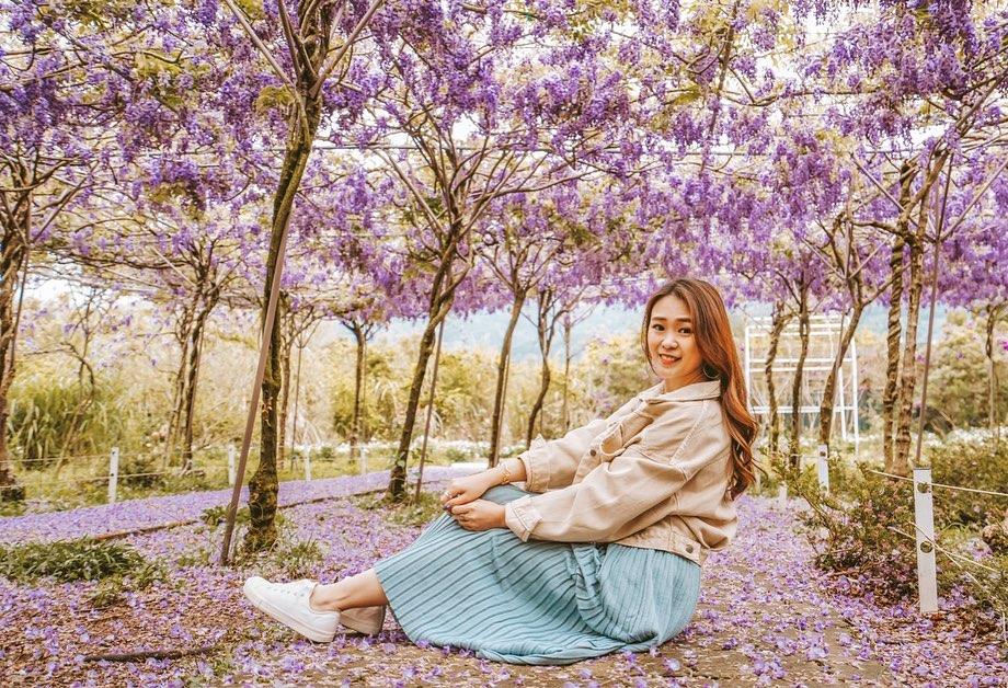 紫藤花咖啡館-水源園區花景
