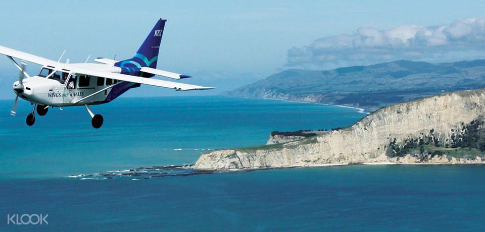 new zaland scenic coastal flight