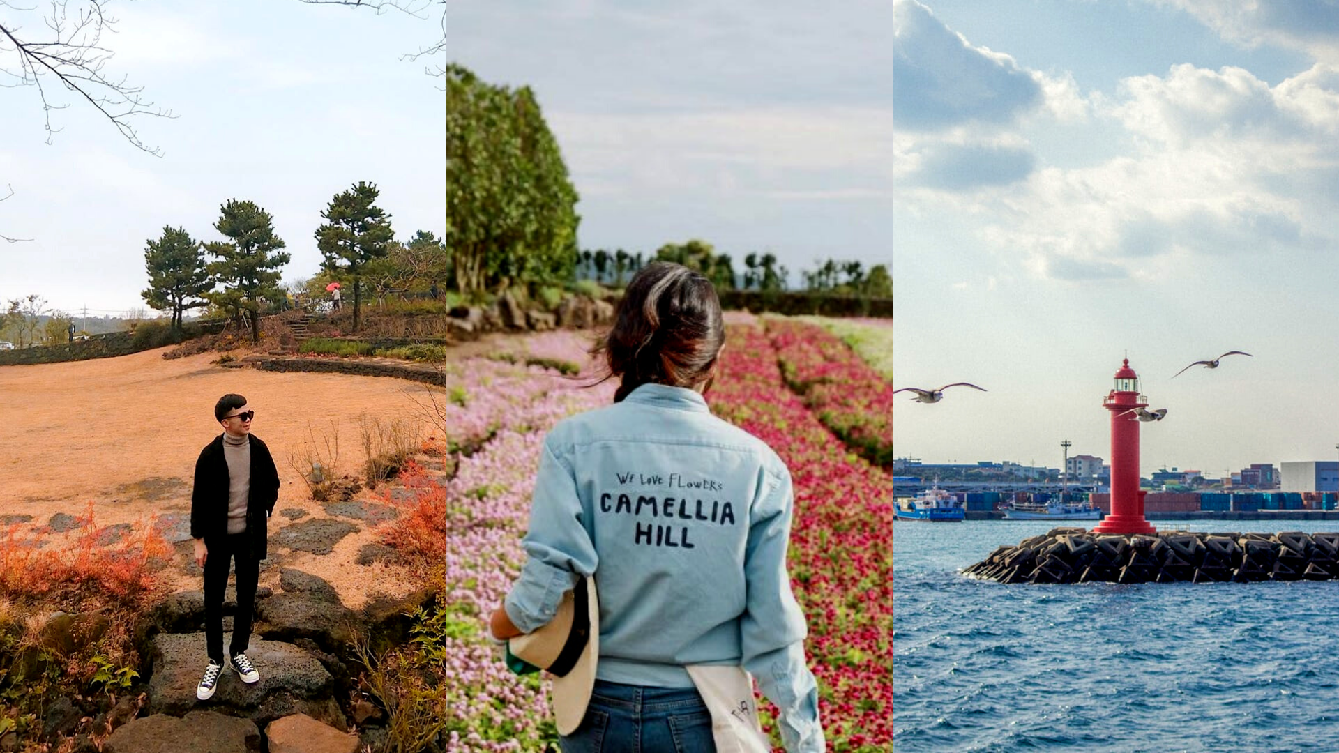 Here Are 10 Postcard-Perfect Reasons Why You Should Travel To Jeju Island, South Korea Next