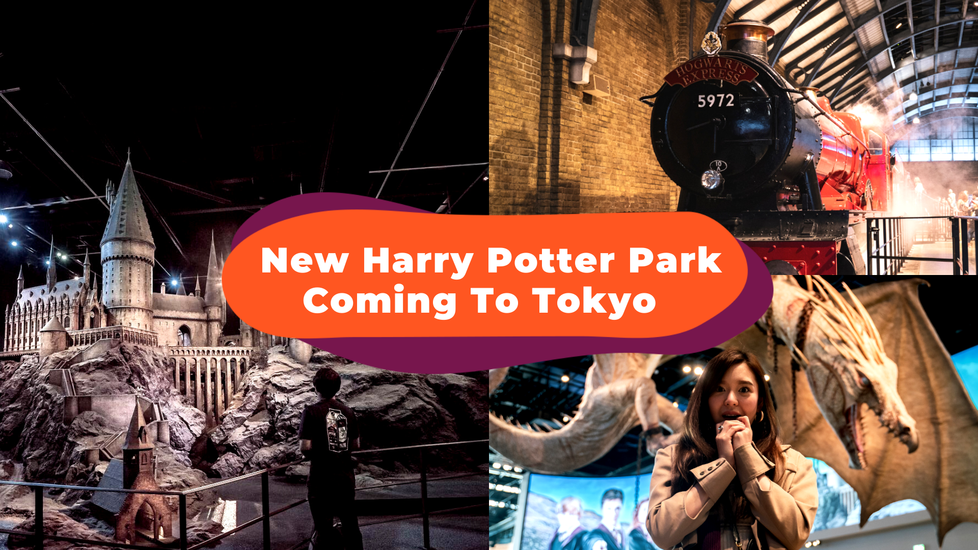New Harry Potter Theme Park Set To Open In Tokyo In 2023