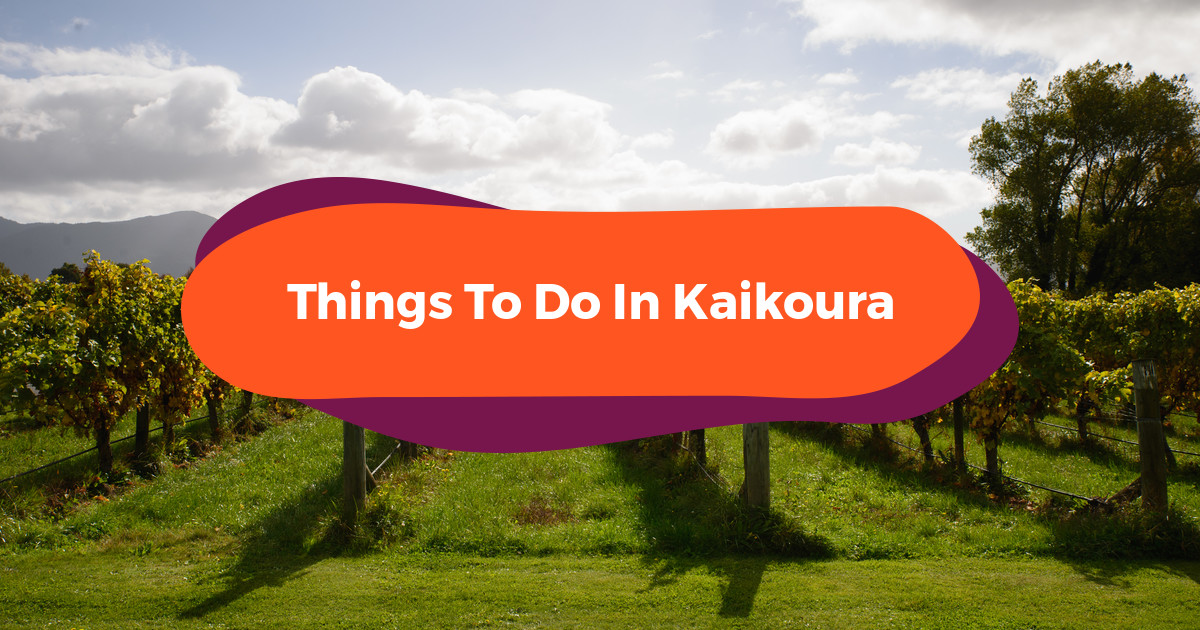 10 Things To Do In New Zealand's Kaikōura: Soul-Stirring South Island Adventures
