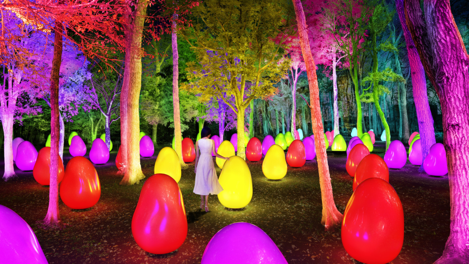 New teamLab Exhibit Is An Enchanted Acorn Forest Just Outside Tokyo