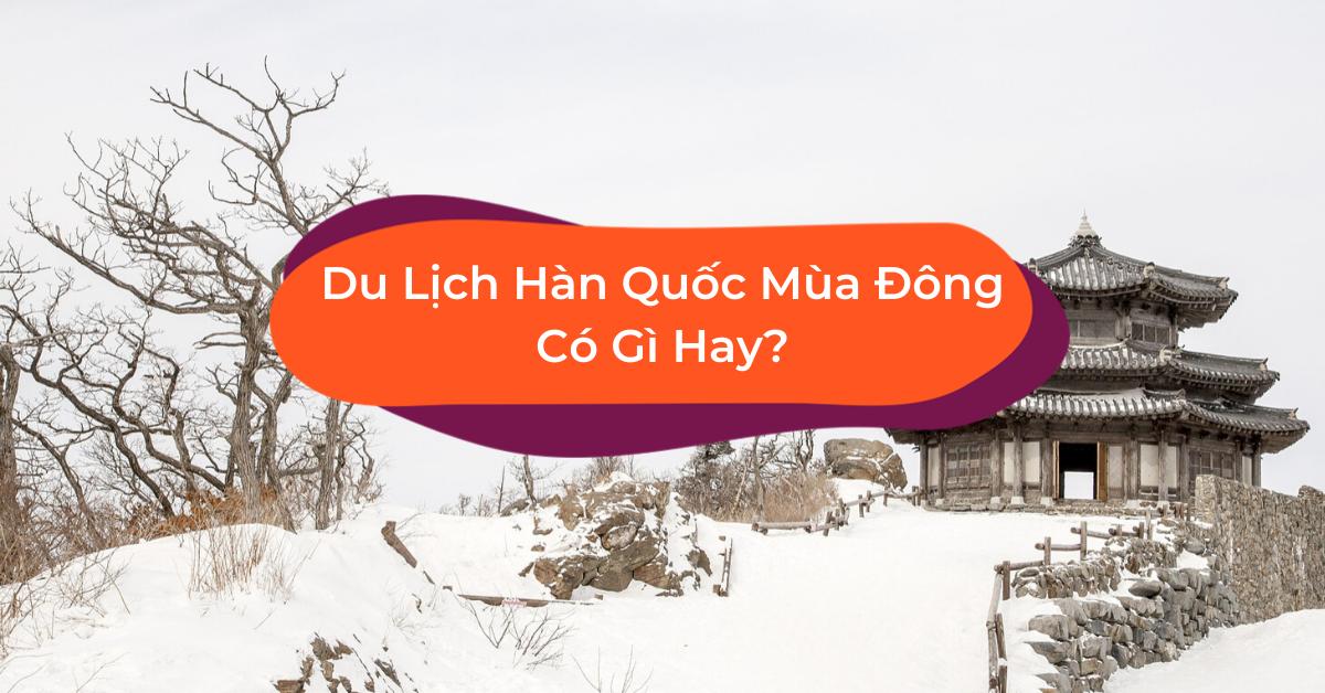 Du Lịch Hàn Quốc Mùa Đông: Hơn Cả Giấc Mơ Tuyết Trắng!