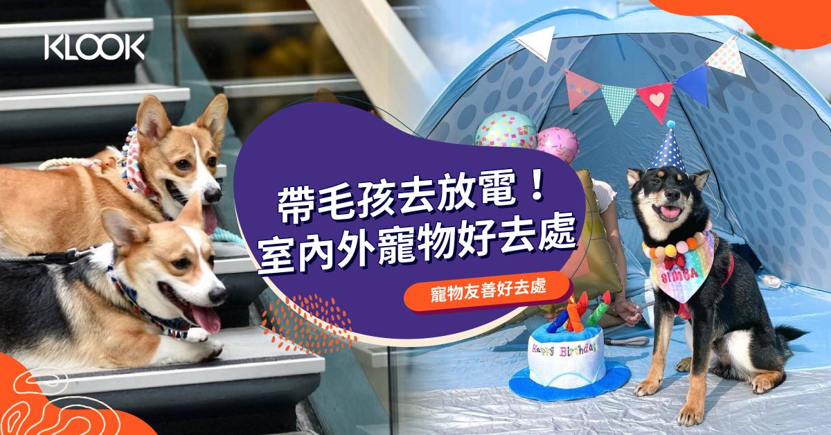 【狗狗好去處】室內外寵物放電好去處!寵物公園、寵物友善商場餐廳推介