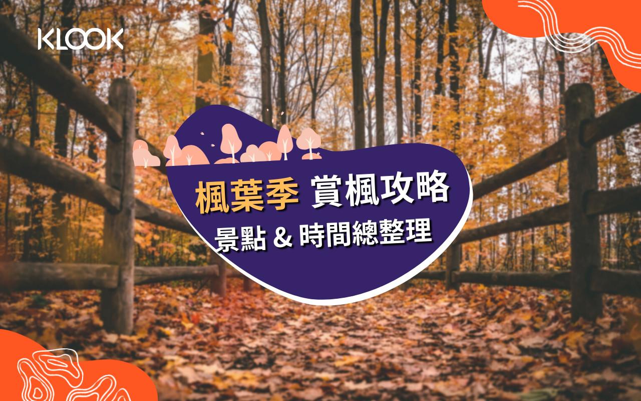 台灣楓葉季:賞楓攻略