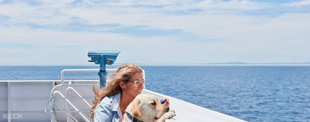a women enjoying the view of port phiilip bay on the deck of searoad ferry with her dog