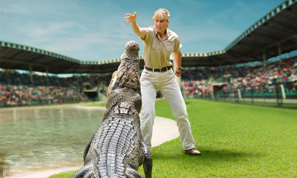 澳大利亚动物园鳄鱼表演