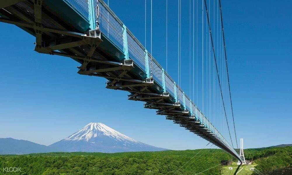 mt fuji and mishima skywalk