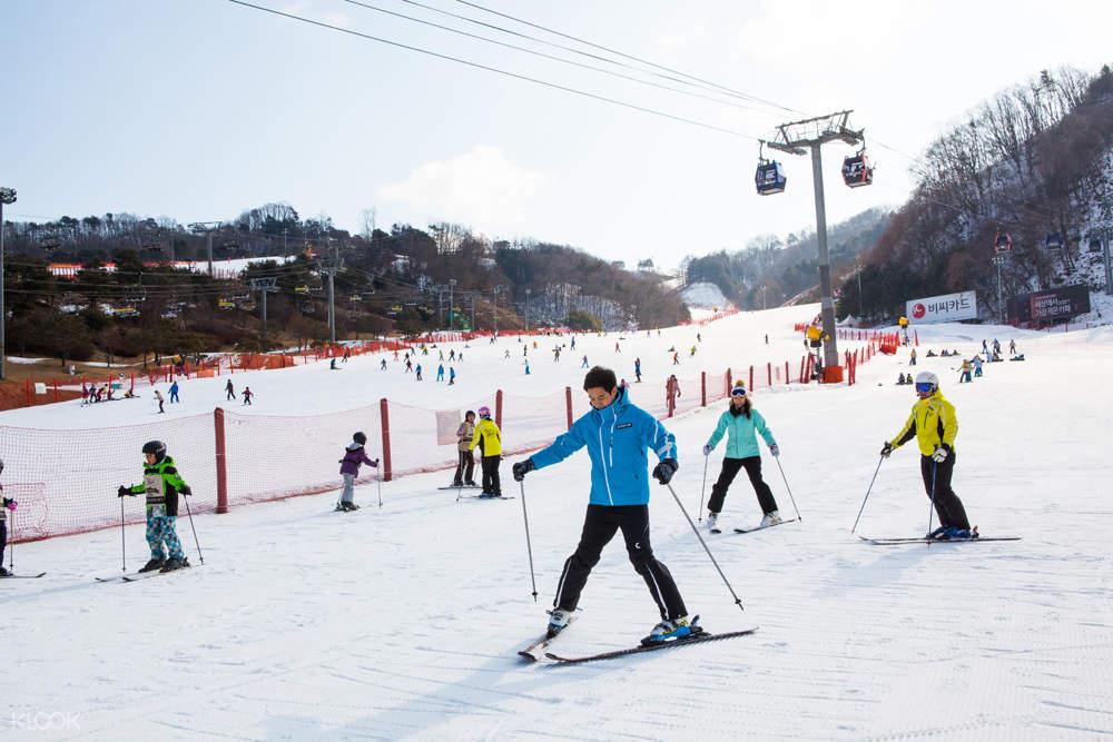 Gangwon do ksia private ski lesson at daemyung vivaldi