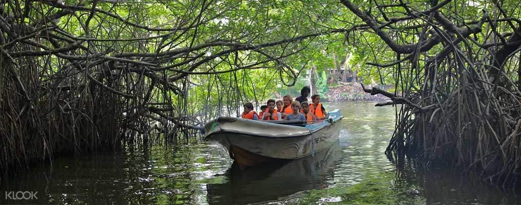 Balapitiya river cruise
