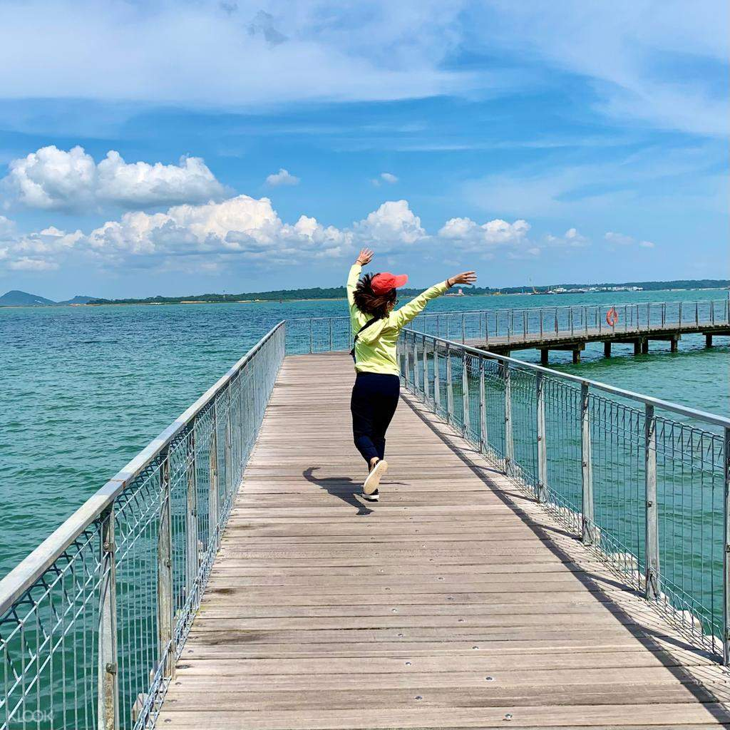 Capture some instagrammable photos in Chek Jawa