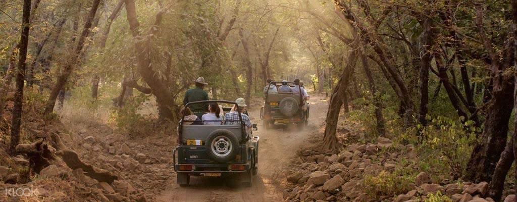 奈尼塔尔和吉姆·科比特4天3夜游(德里出发)