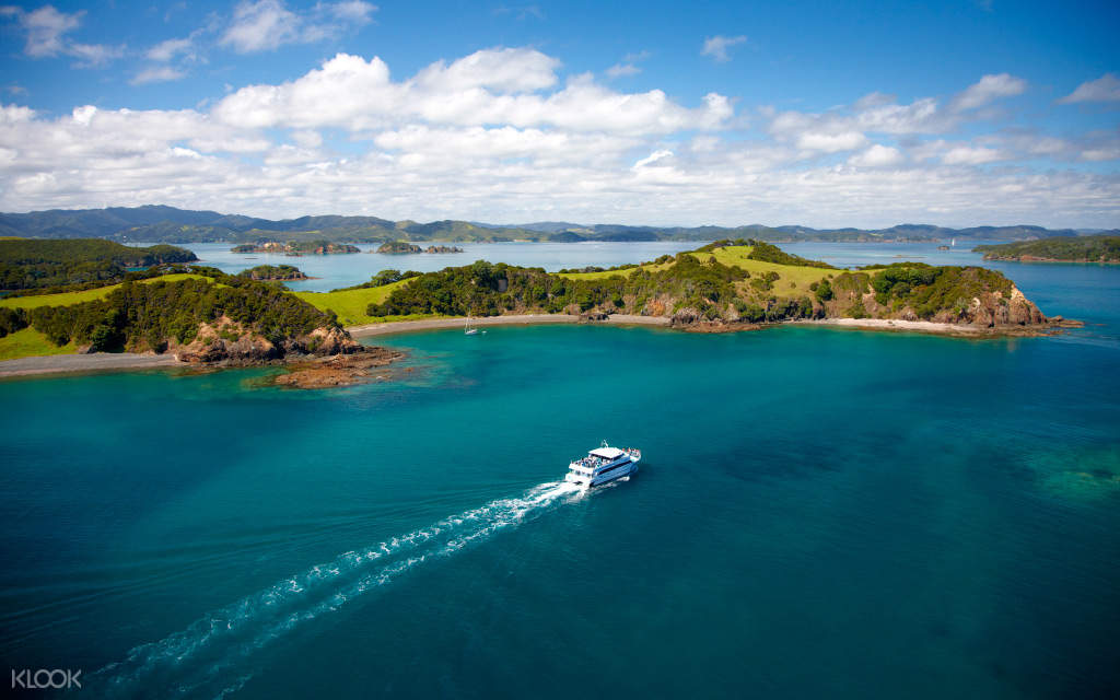 Bay of Islands and Waitangi Tour with Cruise
