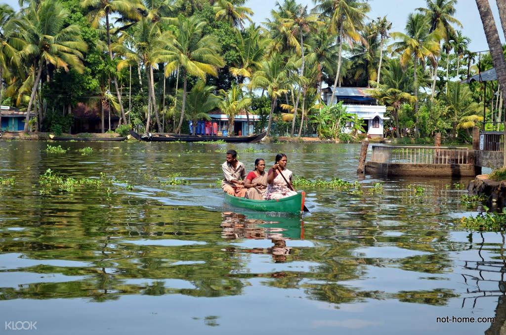 科钦回水湖区(Backwater)船屋巡游