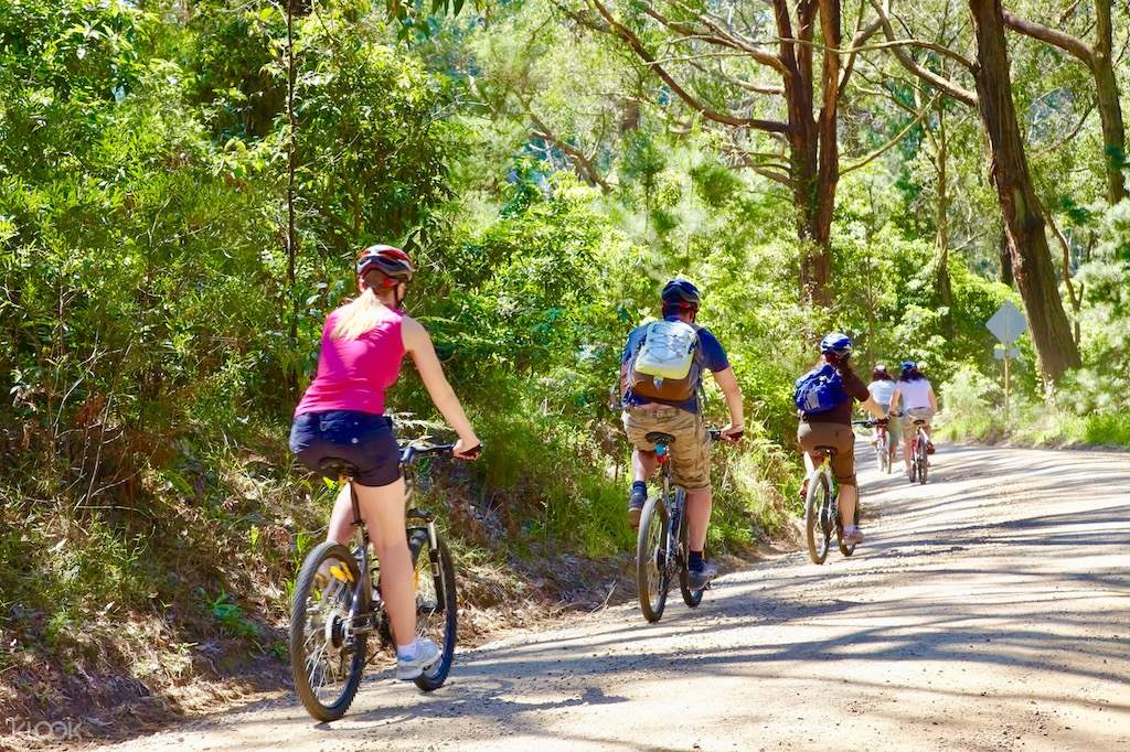 mornington peninsula bike rides