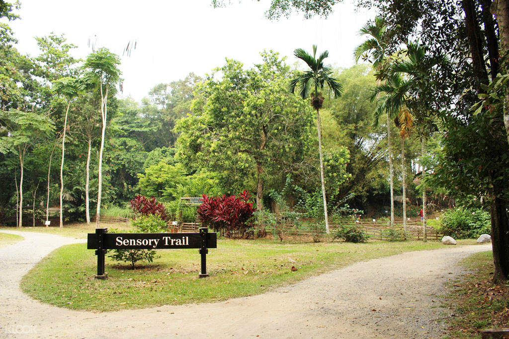 Relax your mind and body when visit to the greenery of Sensory Trail Garden