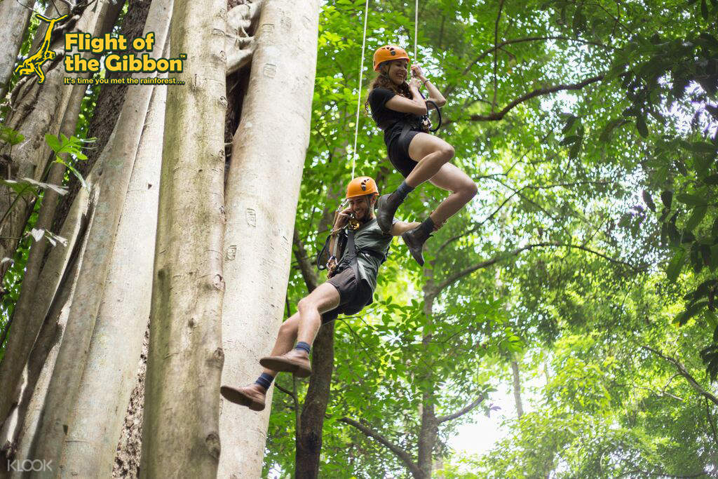 Flight of the Gibbon Zipline Experience in Chiang Mai