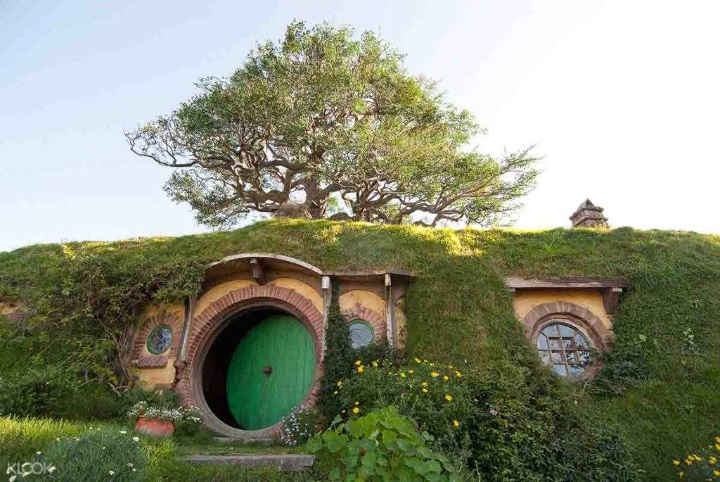 hobbiton tour new zealand