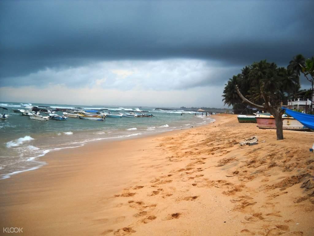 斯里兰卡 加勒周边 希卡杜瓦Hikkaduwa