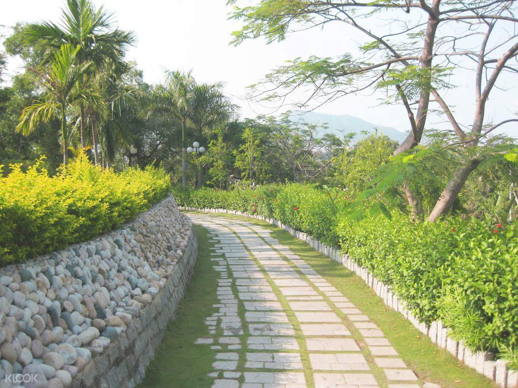 Ghé thăm mộ Hàn Mặc Tử, và tưởng niệm về vị thi nhân tài ba bất hạnh này