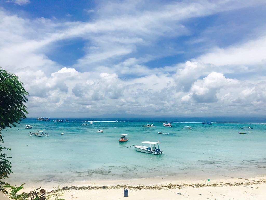 藍夢島,藍夢島潛水,藍夢島一日遊,巴厘島潛水,巴厘島浮潛,藍夢島浮潛,藍夢島紅樹林