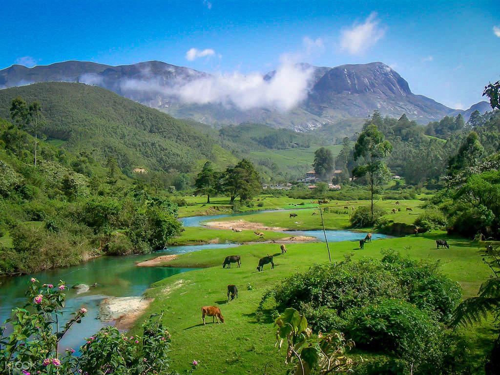 tea valley tour