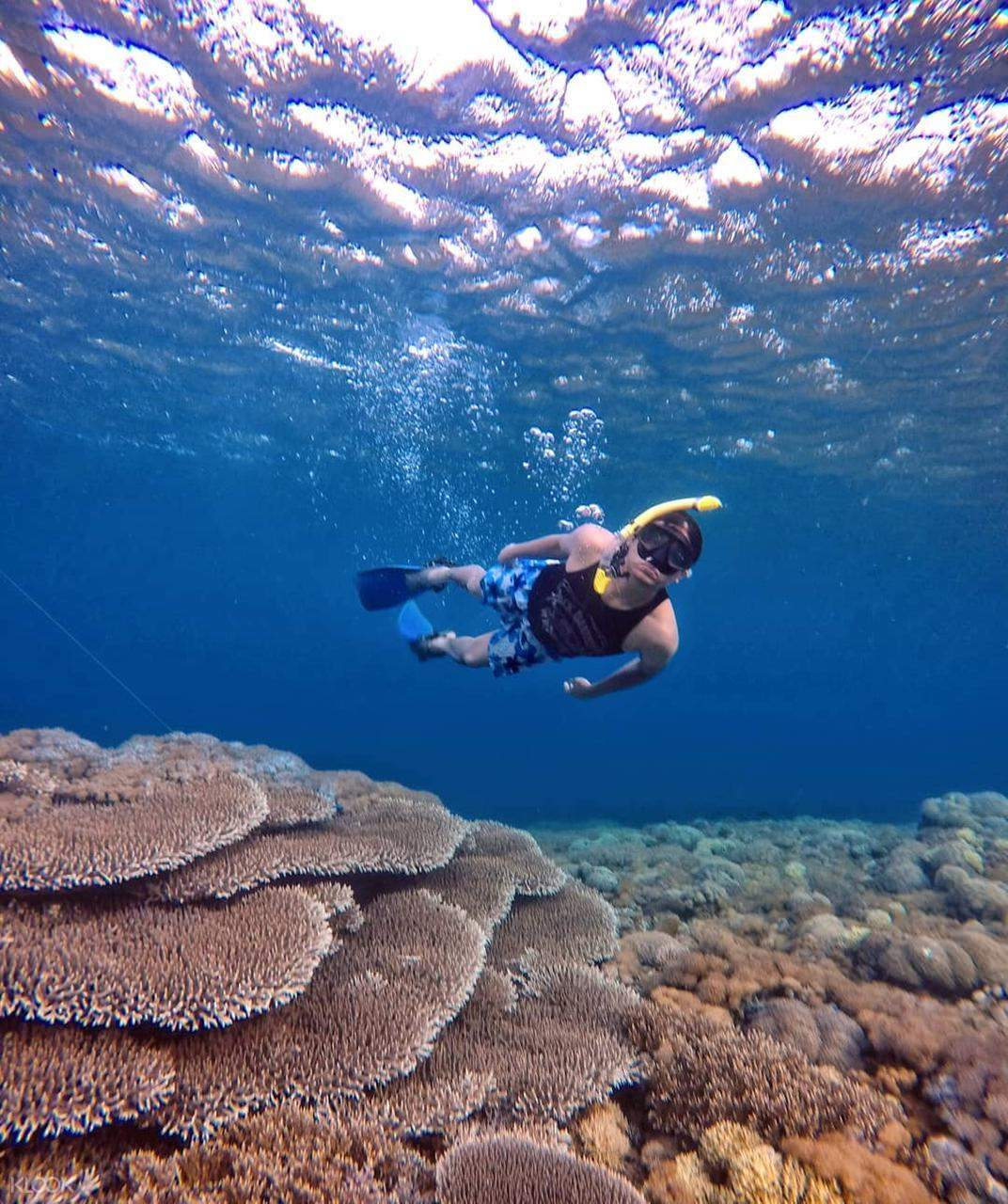 Gili Petelu and Pink Beach Snorkeling Tour in Lombok