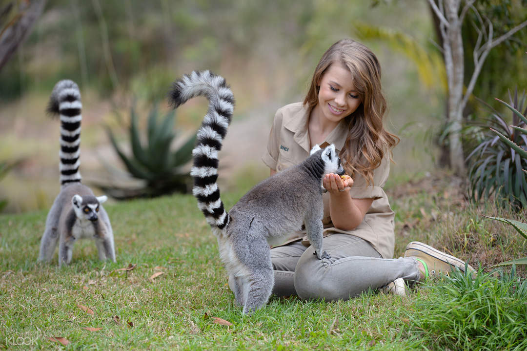 Bindi's Island Australia Zoo