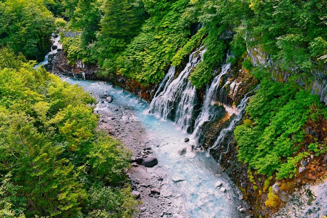 Asahiyama Zoo and Shirogane Blue Pond Day Tour from
