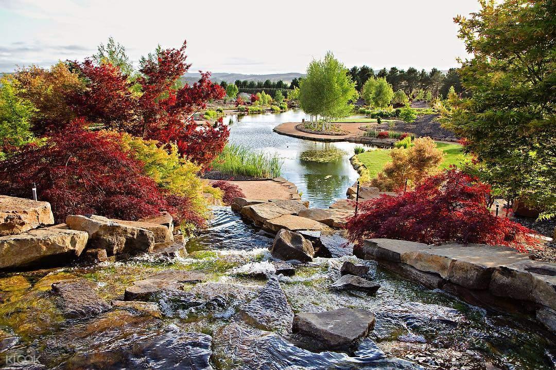 梅菲尔德花园